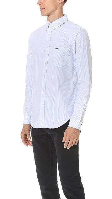 Lacoste Bengal Stripe Button Down Oxford Shirt