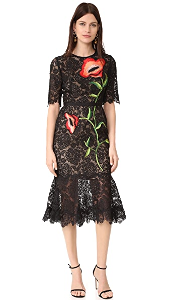 Lela Rose Embroidered Dress In Black Multi