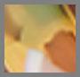 琥珀黄五彩纸屑