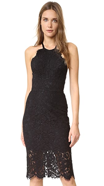 Lover Oasis Halter Dress at Shopbop