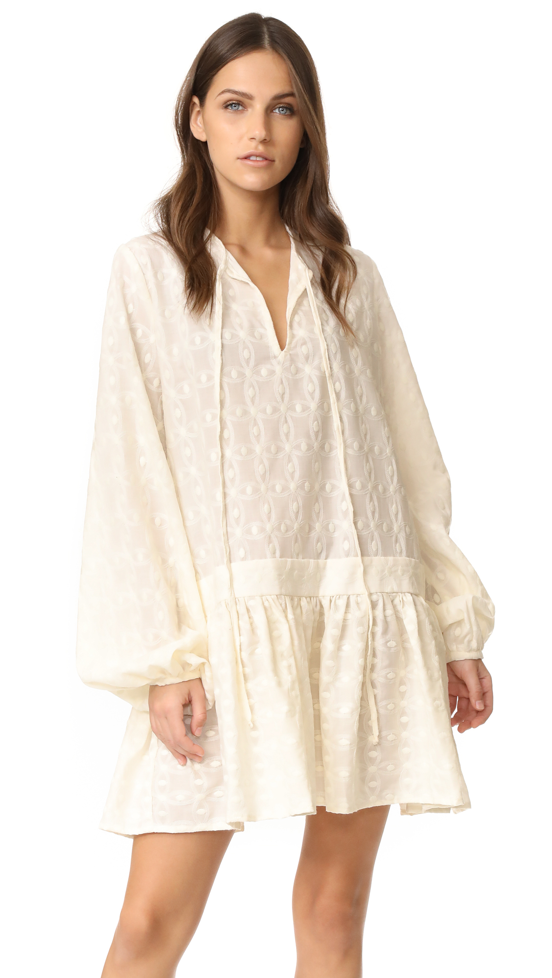 matin embroidered full sleeve dress shopbop