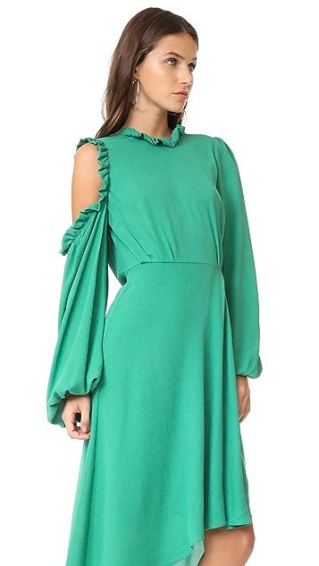 Magda Butrym Calgiari Dress