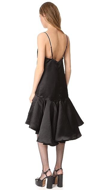Maria Lucia Hohan Sleeveless Dress