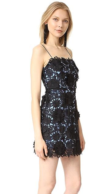 Milly Lace Mini Dress