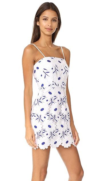 Milly Petal Eyelet Lace Mini Dress