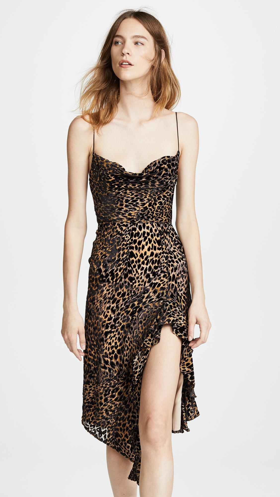 33d2abb9dfac Misha Collection Emilia Leopard Dress | SHOPBOP