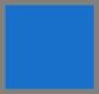правительственный голубой