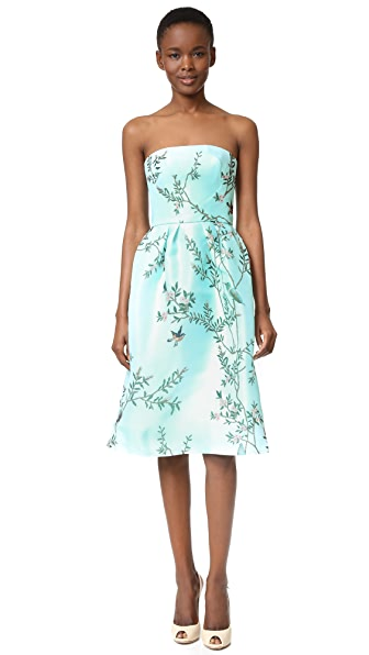 Monique Lhuillier Strapless Dress
