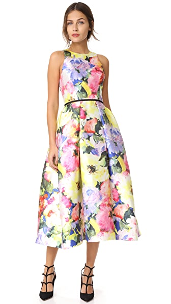 Monique Lhuillier Sleeveless Structured Dress online sales