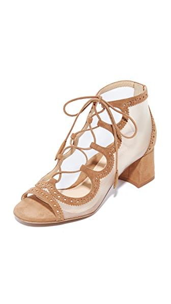 Marion Parke Brooke Lace Up Sandals