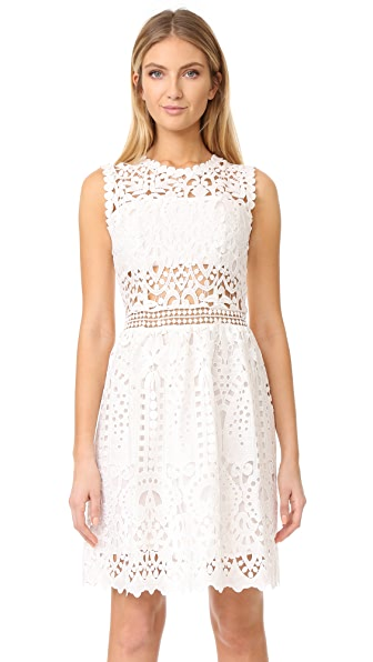 Ministry of Style Lush Lace Dress In Ivory