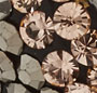 Rose Gold/Aqua Aura