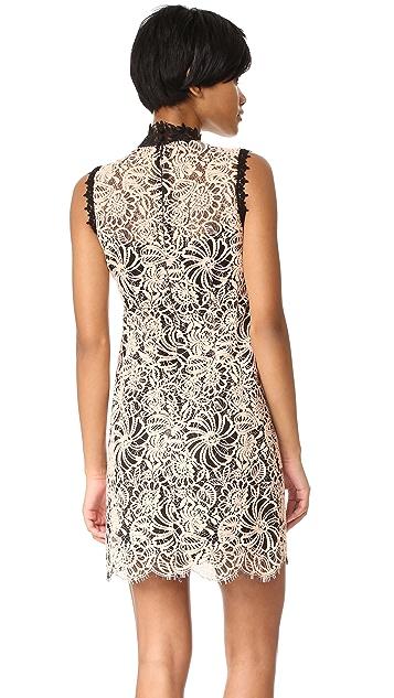 Nanette Lepore Paramour Shift Dress