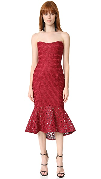 Nicholas Spot Lace Strapless Dress