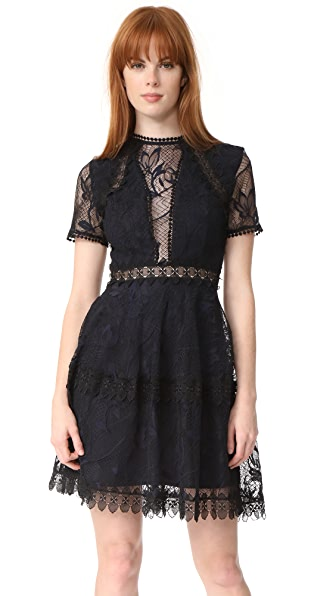 Nicholas Iris Lace Mini Paneled Dress - Navy