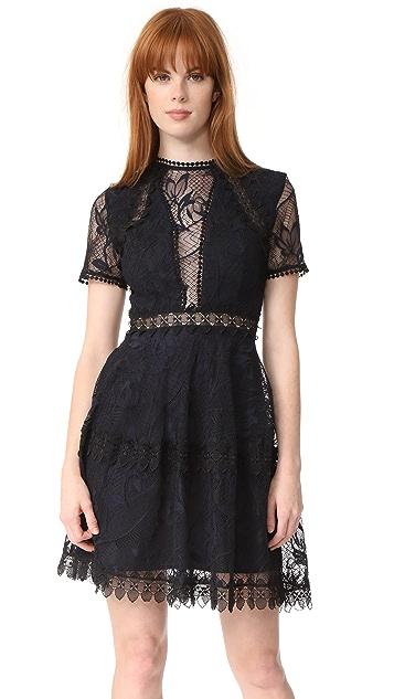 Nicholas Iris Lace Mini Paneled Dress