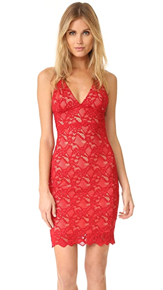 Nightcap x Carisa Rene Classic Lace Slip Dress - Scarlett