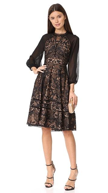 Marchesa Notte Guipure Cocktail Dress
