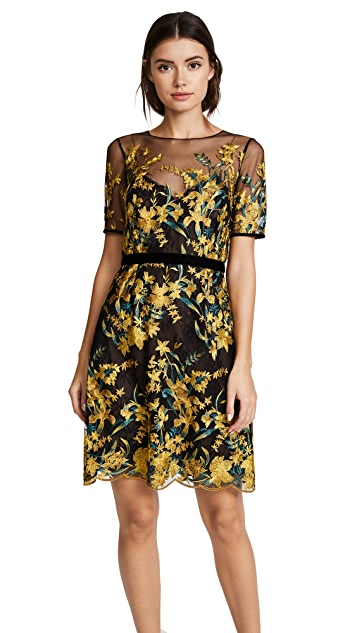 Marchesa Notte Embroidered A Line Cocktail Dress