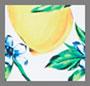 Lemons All Over