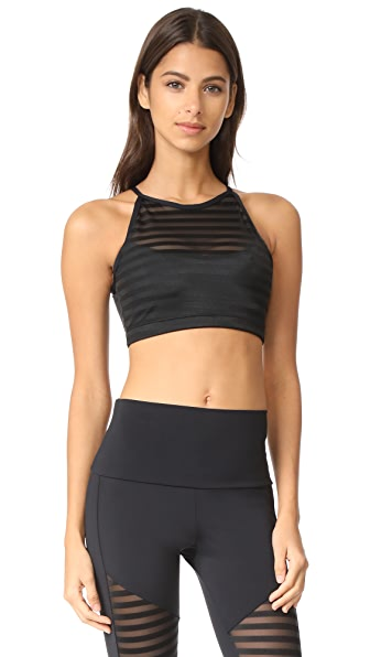Onzie Mesh Crop Bra Top
