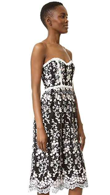Parker Parker Black Sonny Lace Dress