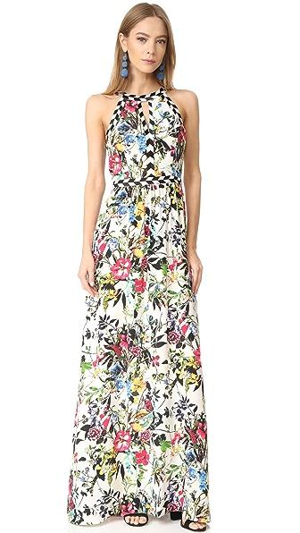 Parker Luella Dress
