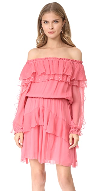 Parker Palmero Dress
