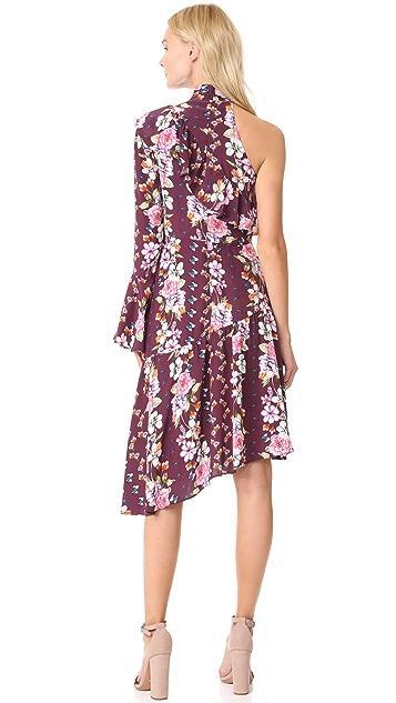 Parker Rine Dress