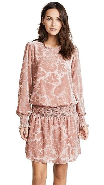 Parker Carmindy Velvet Dress In Apricot