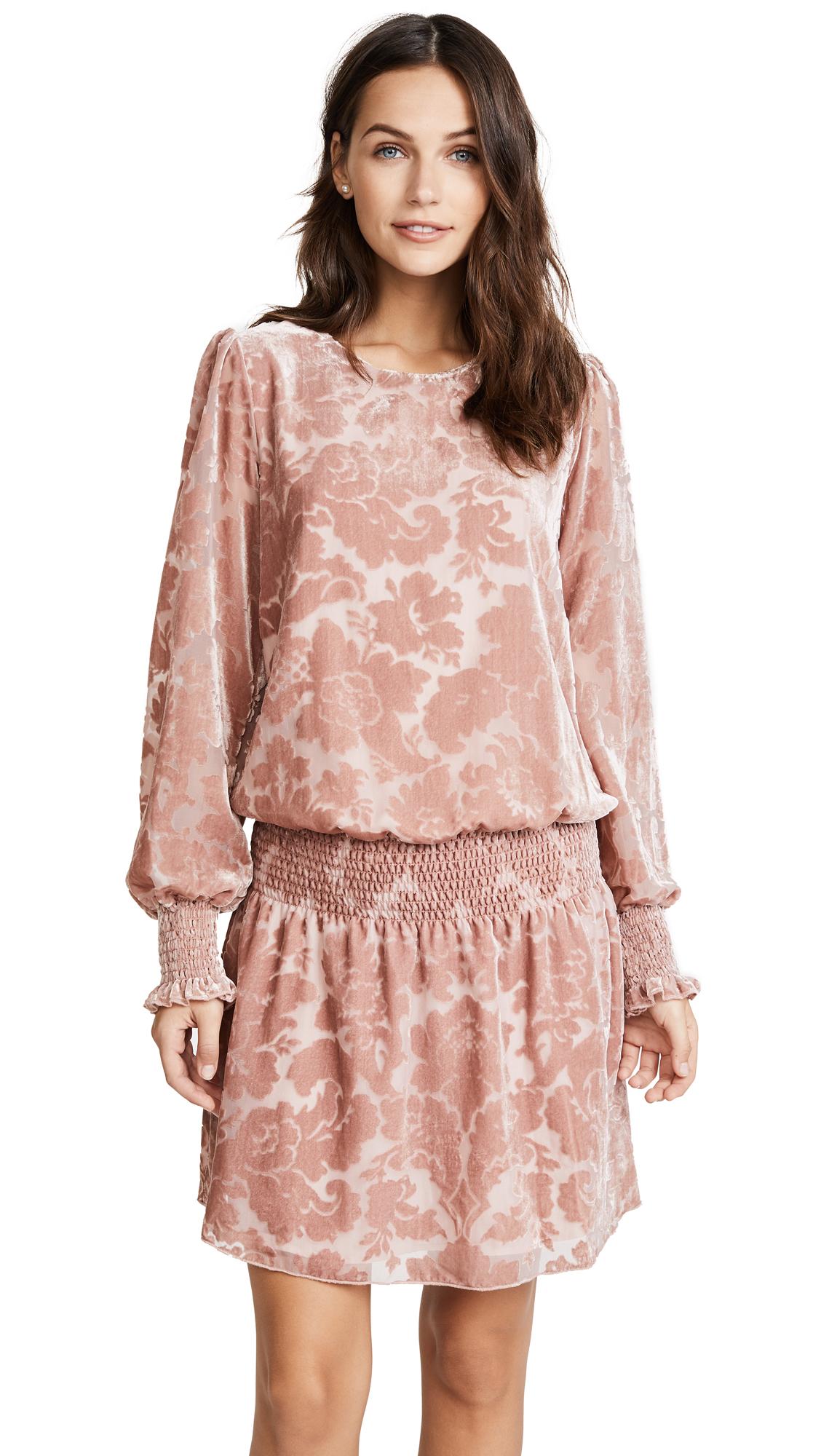 Parker Carmindy Velvet Dress