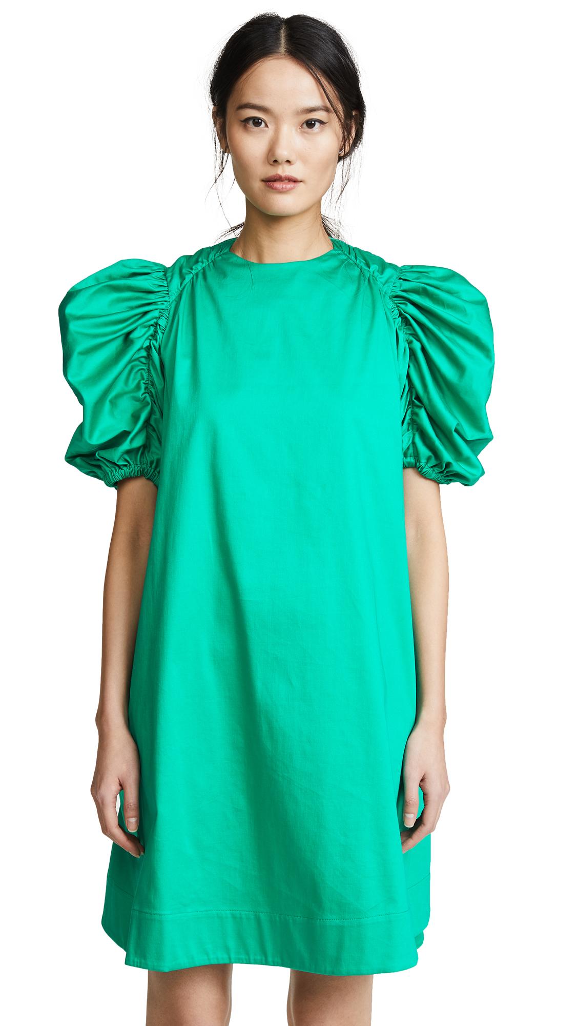 Paskal Flared Puffed Sleeve Dress