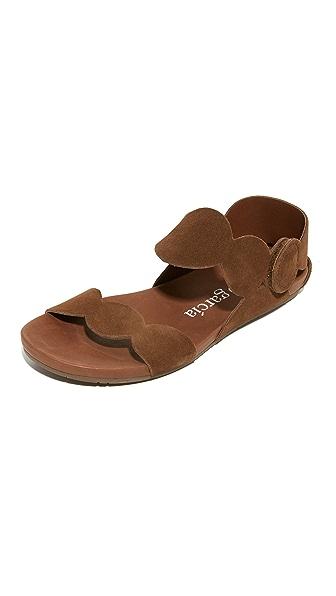 Pedro Garcia Jeanne Flat Sandals - Cocoa