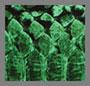 зеленый змеиный