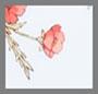Wild Flower