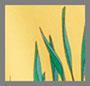 Marigold Palm