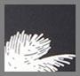 Black Snow White Palm