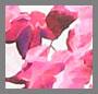 Garnet/Fuschia Floral