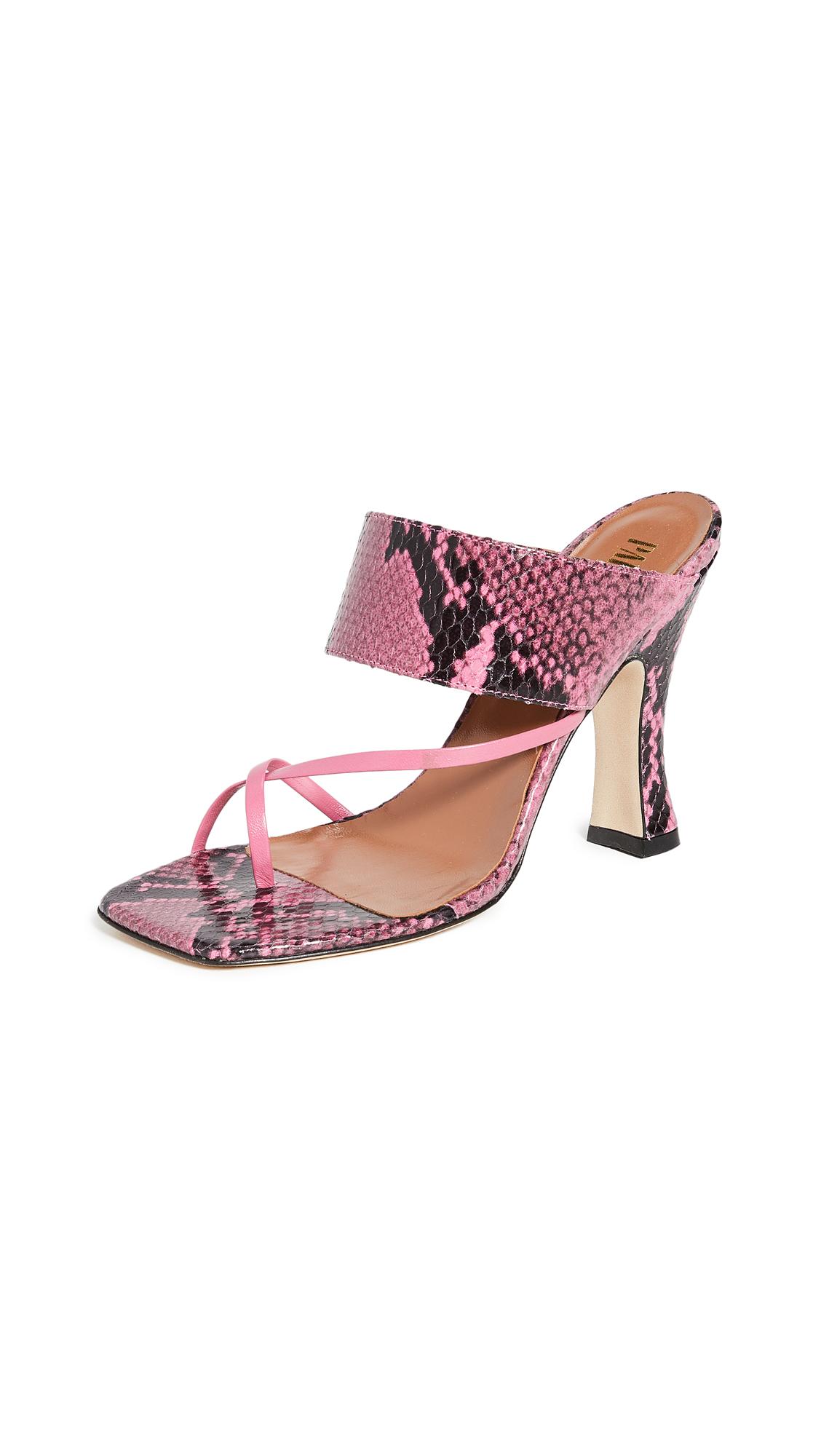 Buy Paris Texas Python Print Crossover Thong Sandals online, shop Paris Texas