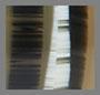 Olive Stripes