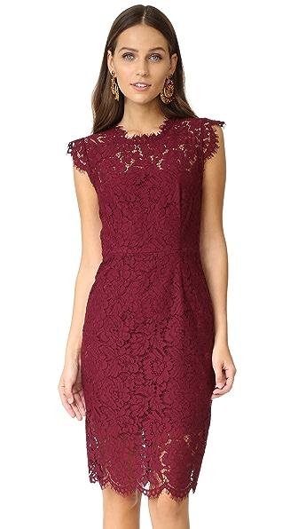 Rachel Zoe Suzette Lace Dress In Maroon