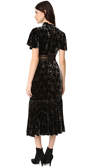 Rebecca Taylor Shadow Floral Velvet Dress