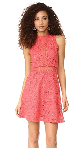 Rebecca Taylor Sleeveless Arella Lace Dress at Shopbop