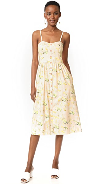 Rebecca Taylor Sleeveless Firefly Floral Dress at Shopbop