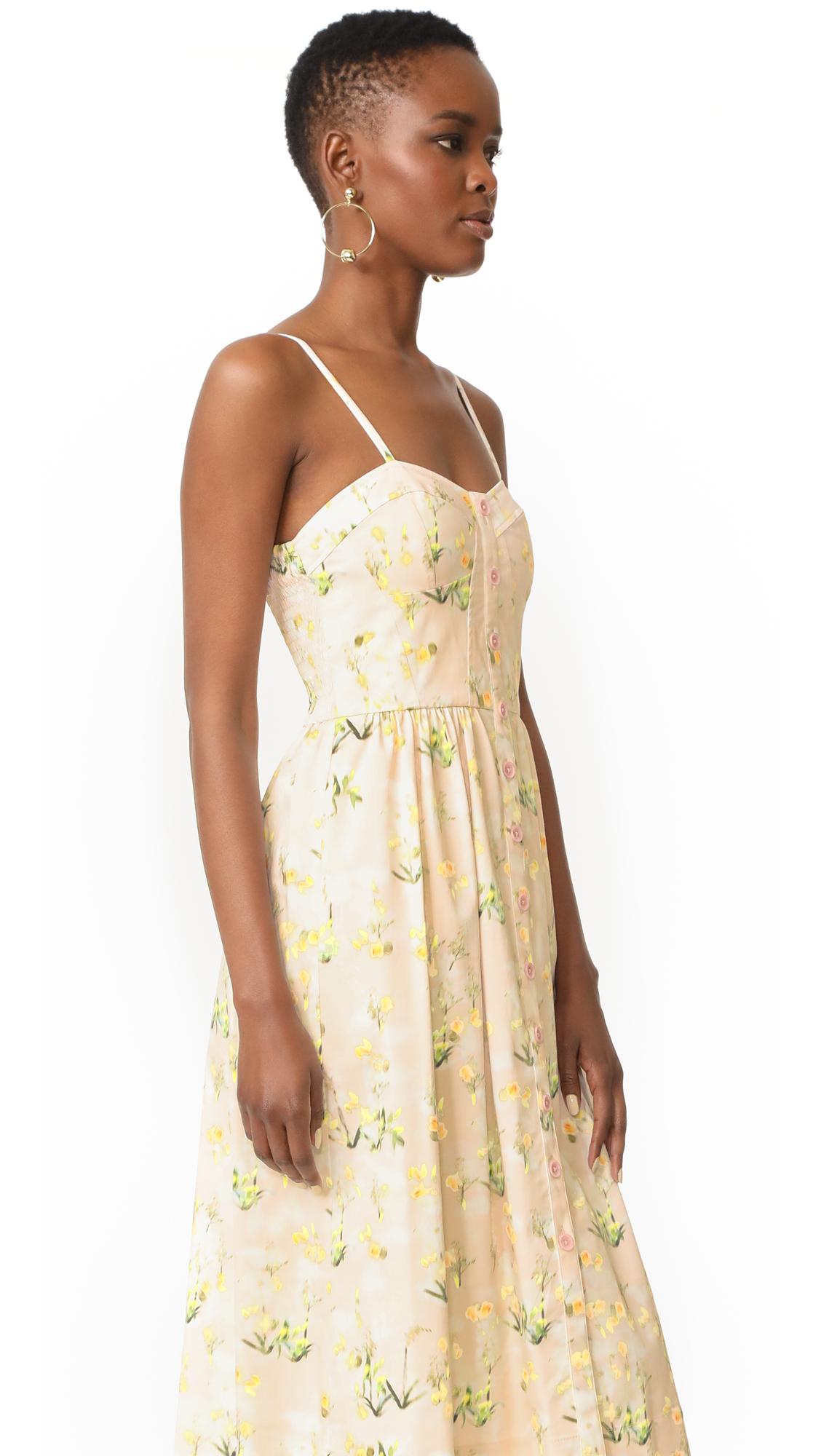 Rebecca Taylor Sleeveless Firefly Floral Dress | SHOPBOP