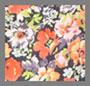 Orange/Lilac