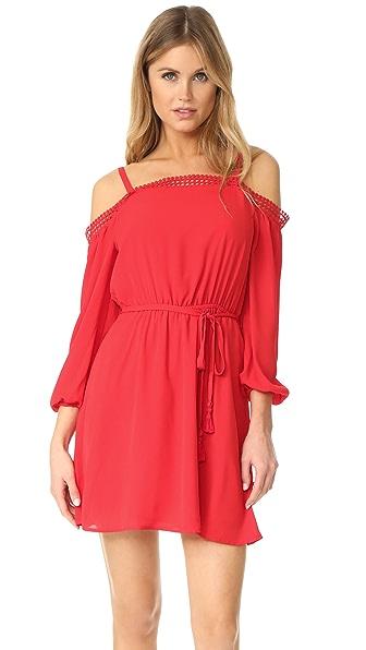 Rebecca Minkoff Paradise Dress In Lipstick