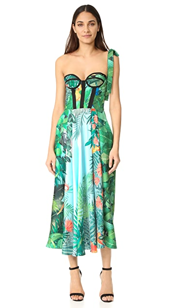 Rochas Strapless Print Dress