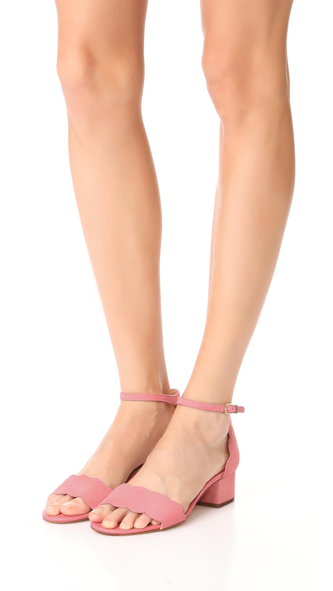 f5b01b6ba7a Sam Edelman Inara City Sandals