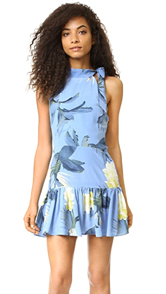 Sam & Lavi Adora Floral Dress